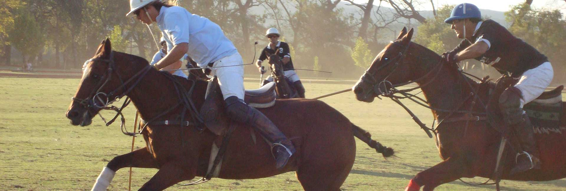 Famous Polo Argentino
