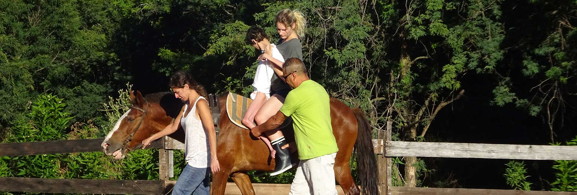 Volunteer Project Equine Therapy