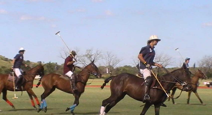 Polo Match in Argentina
