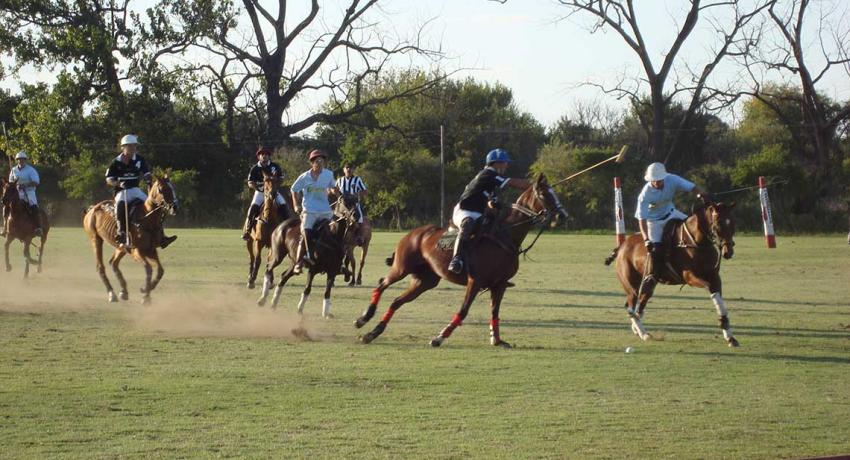 Polo is a fast sport