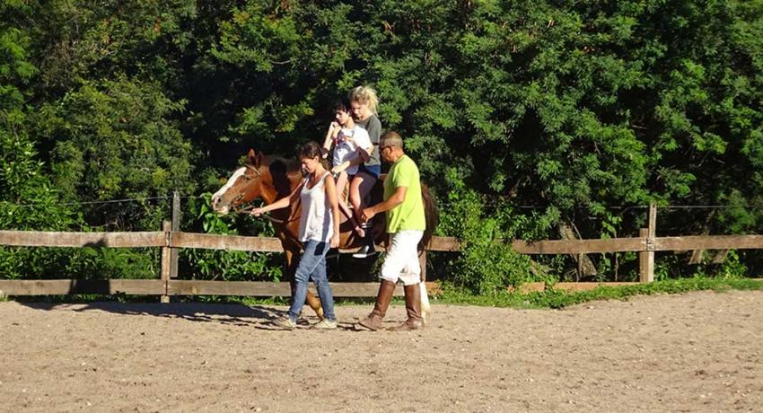 Assisting the equine therapist